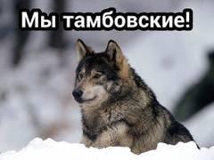 http://s7.uploads.ru/t/q7Rnz.jpg
