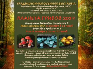 http://s7.uploads.ru/t/qcWtV.jpg