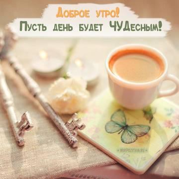 http://s7.uploads.ru/t/shcIv.jpg