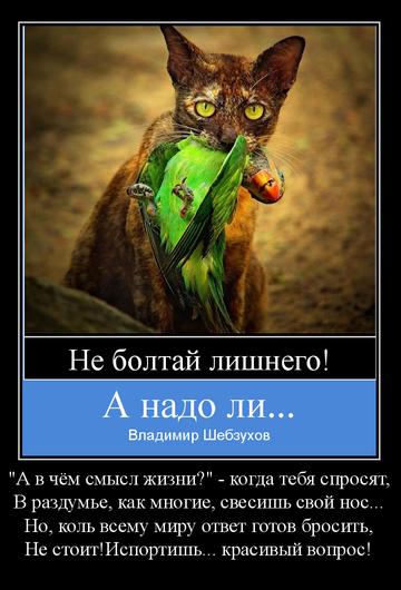 http://s7.uploads.ru/t/uJ7tE.png