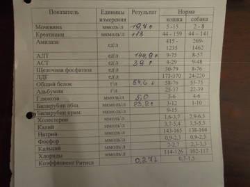 http://s7.uploads.ru/t/wXMvi.jpg