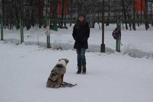 http://s7.uploads.ru/yesdQ.jpg